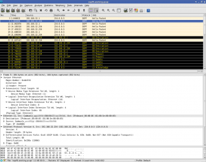 OSPF Image